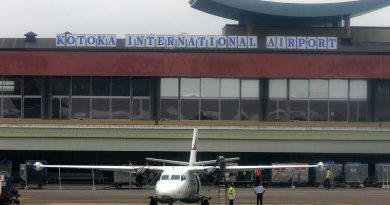 Domestic airlines to resume operations this weekend - Minister hints