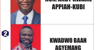 Asante Akyem North NPP Delegates Voting Despite Court Injunction