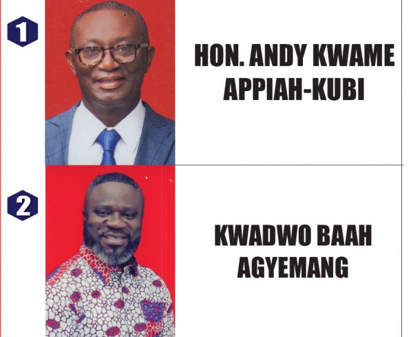 Asante Akyem North NPP Delegates Voting Despite Court Injunction