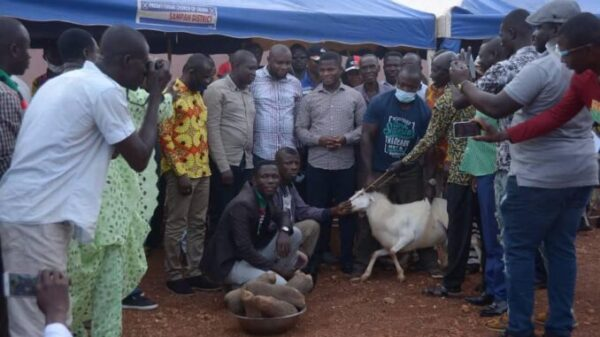 NDC Gifts Sammy Gyamfi Five Tubers of Yam and a Ram For Being Hardworking -SEE PHOTO