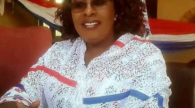 NPP 2020 Manifesto: South Africa NPP Branch Chairperson Urges Unity Ahead Of Election