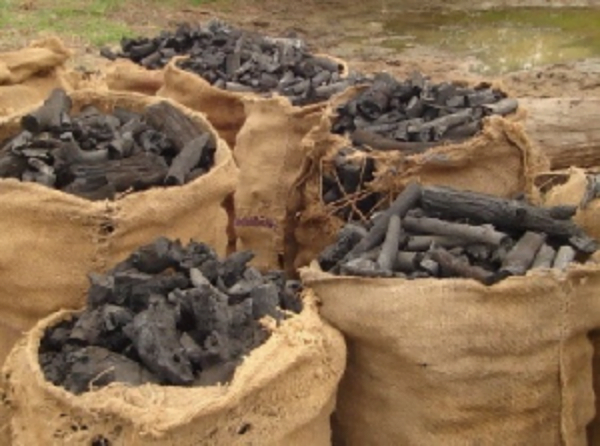 Ghana Now Imports Charcoal - CHECK OUT REASON