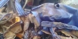 2 Dead, 1 in Critical Conditon In Fatal Accident At Offinso