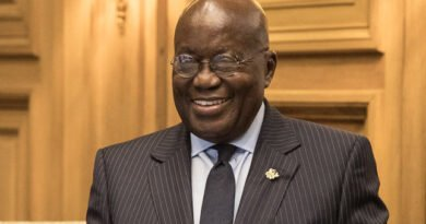 """Ghana Is A Haven Of Peace, Investments Are Protected"" – President Akufo-Addo To Spanish Investors"