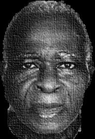 Prof. K.N. Afful